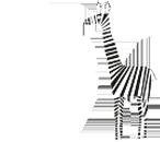 Csíkos zsiráf
